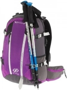 quechua-backpack-forclaz-22-air