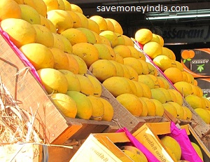 alphonos-mango