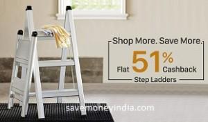 ladders51
