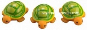 mee-turtle