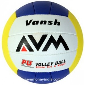 avm-volley