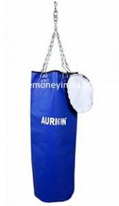 aurion-boxing