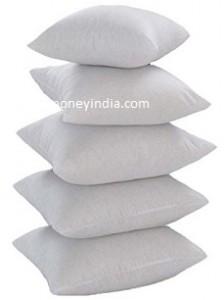 christys-cushion