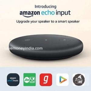 echo-input