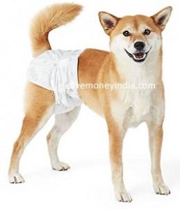 dog-diaper